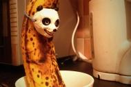 Panda Banana