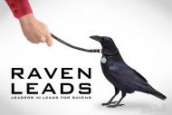 Ravens lead